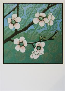 Chaenomeles japonica card