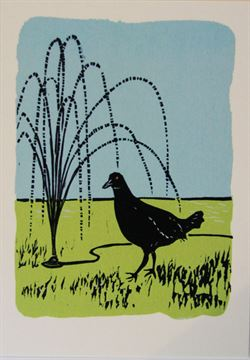 Native hen and hose pipe card